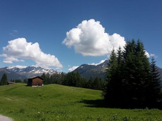 hotel-bergerhof-montafon-natur-4